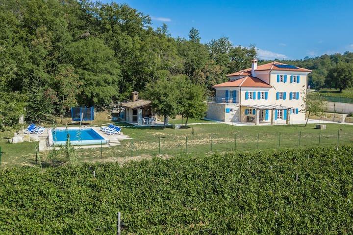 Villa Kanedolo surrounded by vineyards