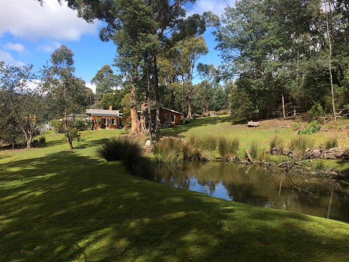 The Glade - Idyllic forest retreat 10 mins from town