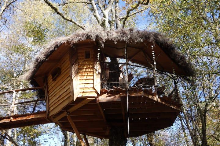 Cabane du Brame, perchée à 5m, nuit cocooning