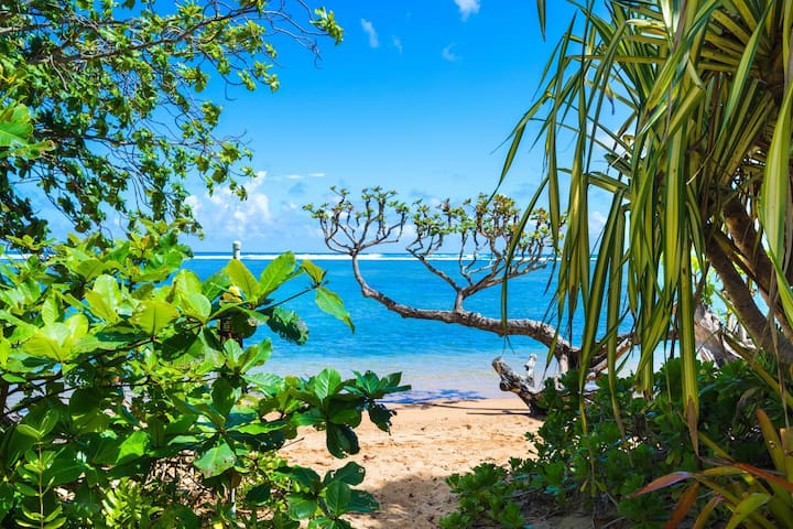 Family friendly cottage, nearby access to Anini beach - 85 steps away!