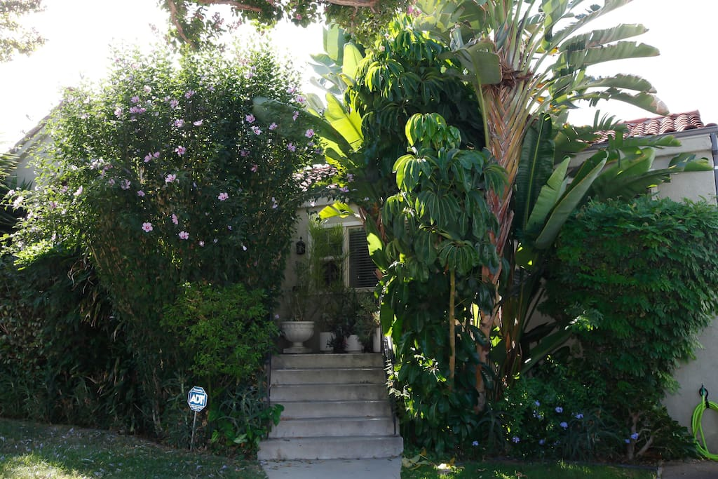 Your walkway up to your home away from home. So green!!