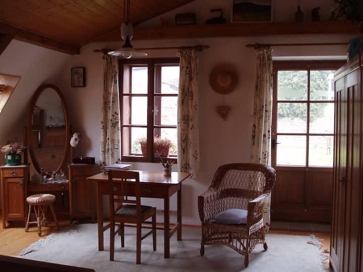 Cozy attic in Baroque Manětín
