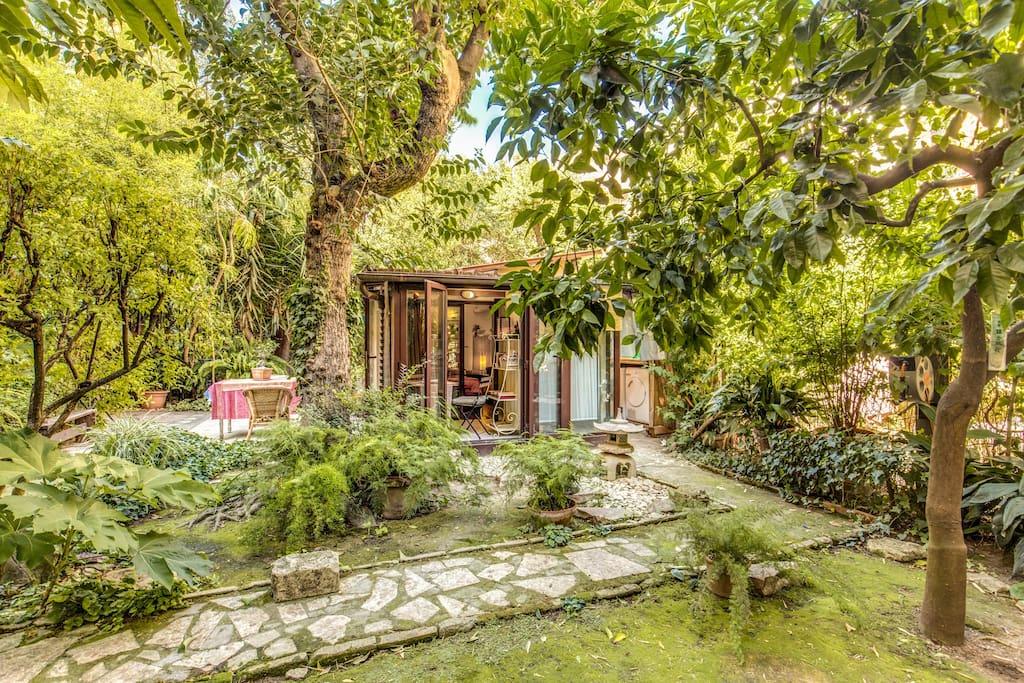 Zen Garden B B Trastevere Bed Breakfasts Zur Miete In Rom Latium Italien