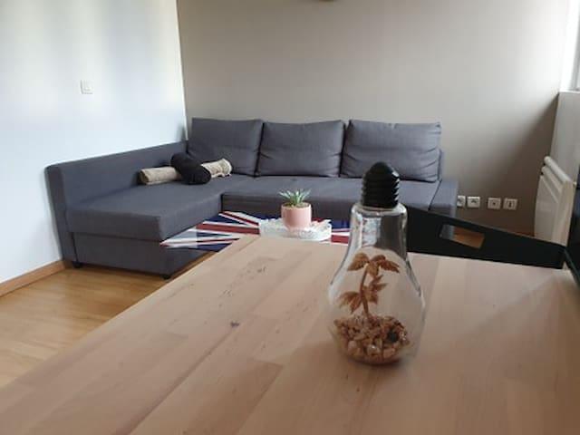 Bel Appartement Cosy proche CDG PARIS ASTERIX