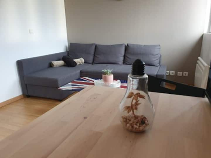 Bel Appartement Cosy proche CDG PARIS ASTERIX