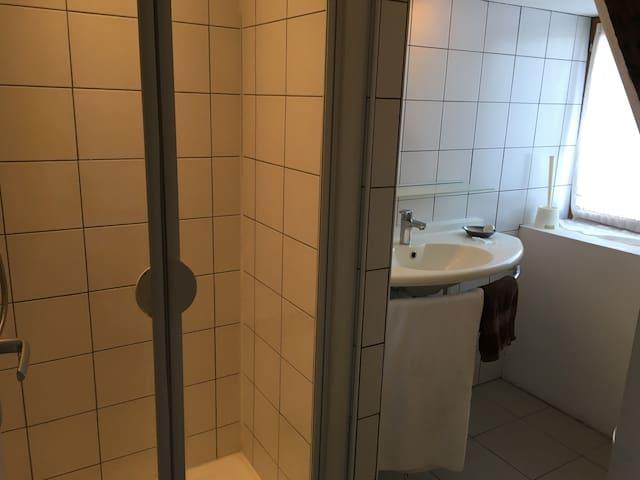 Chambre privé avec salle de bain - Douai - Appartement