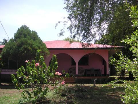 Tropical Dreams Hostel - Annex Rose