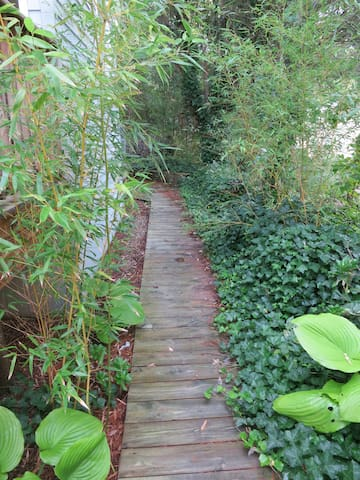 path on side of house to 2 outdoor showers-kind of tropical!