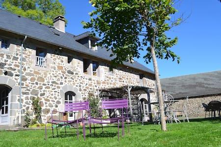 Maison avec jardin et vue montagnes - Lavigerie