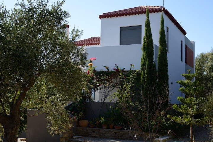Stylish house with views to Foinikounta bay