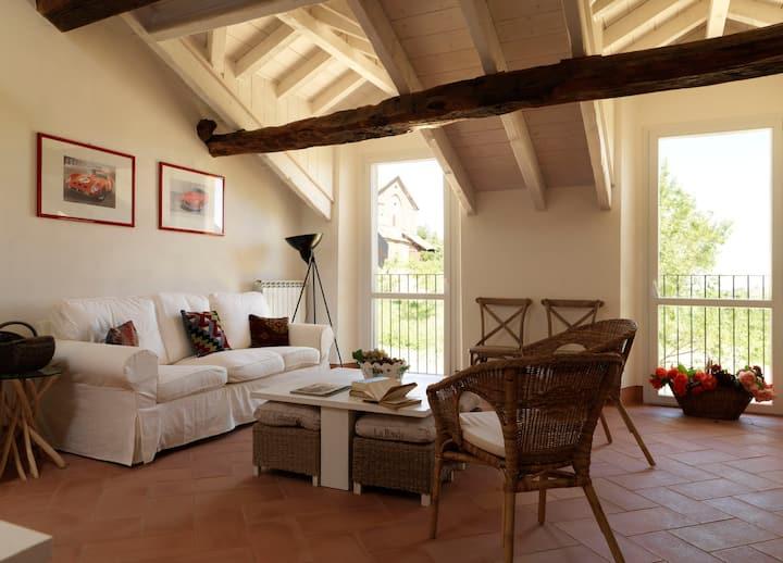 Perfect Hills&Vineyards near Milan- Oltrepò pavese
