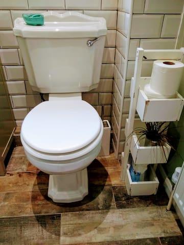 Victorian style toilet