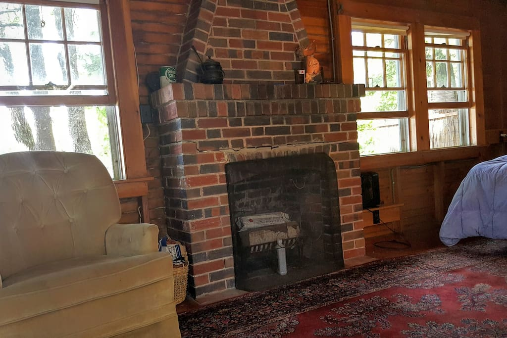 Non functioning fireplace but pretty to look at!