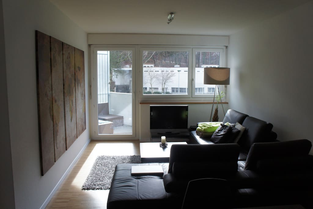 Modern and bright living room with real leather sofa