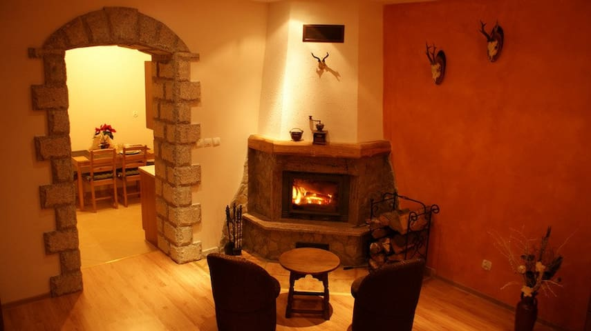 Apartment with fireplace - Szklarska Poręba - Apartamento