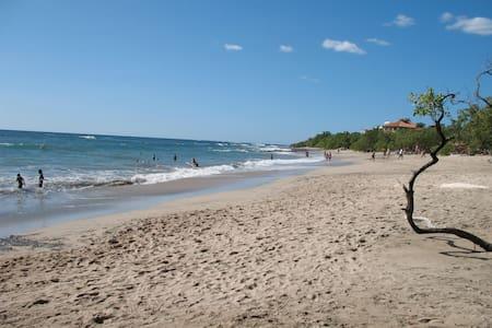 Playa Negra Tropical Paradise House - Santa Cruz - House