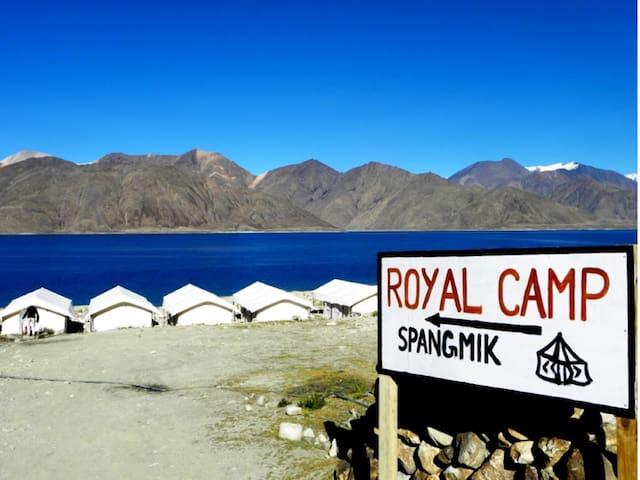 TIH Royal Camp-Pangong