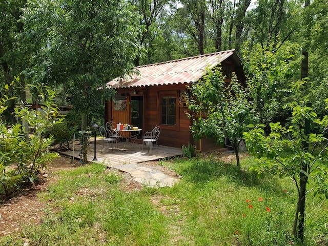 La Cabane de Pioupiou dans la nature