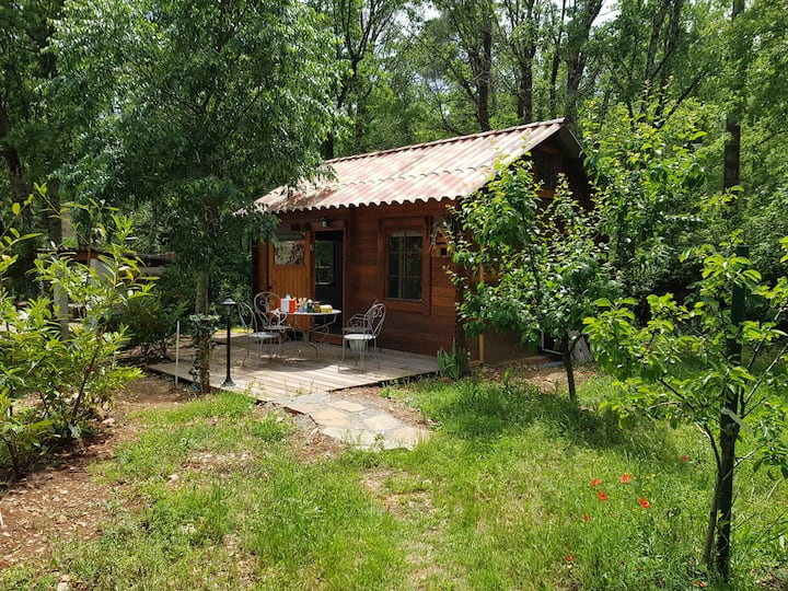 La Cabane de Pioupiou au milieu de la nature
