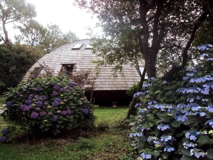 Dans une maison ronde en bois  entre ciel et terre
