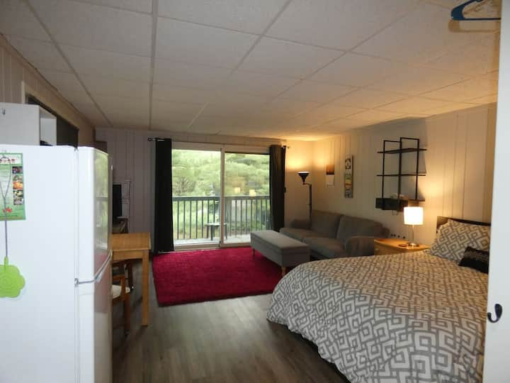 Wind Cliff Studio- Nice Condo at Shanty Creek.