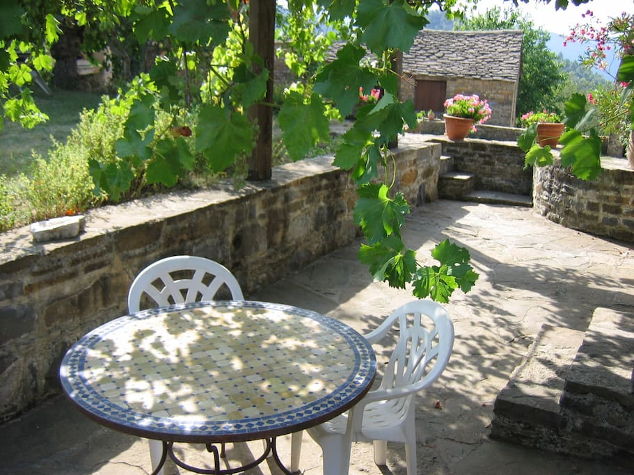 Vine covered terrace