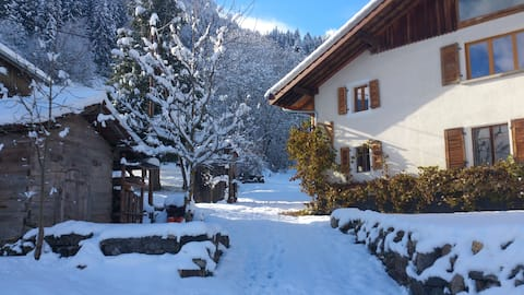 Beautiful 1 Bedroom Apartment in the French Alps