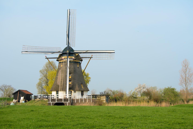 Total freedom, a true Dutch windmill