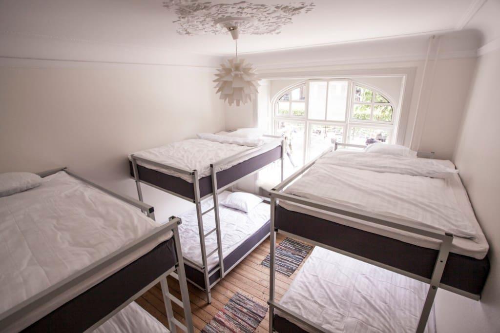 6 bed dorm w. bunk beds