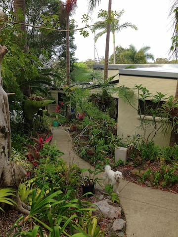 Helen's Hideaway - Coolum Beach - Bed & Breakfast
