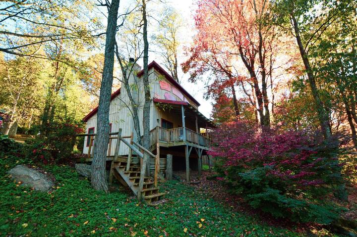 *NEW*Rustic Mountain Retreat in Maggie Valley for 4