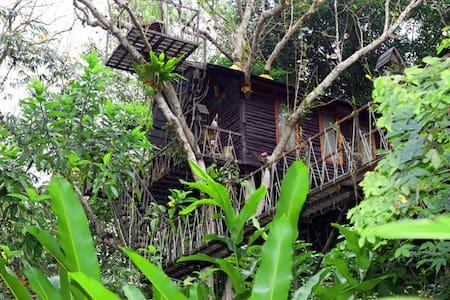 Barbarian Honeymoon Tree House - Phanom