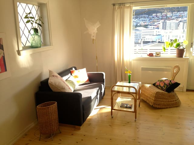 Cozy, quiet apartment close to city centre - Bergen - Apartment