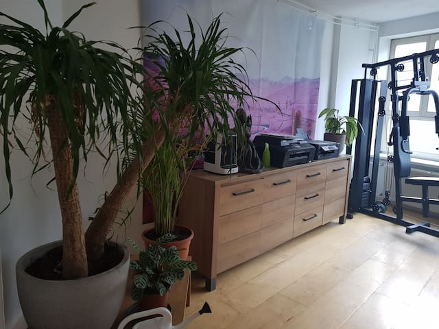 roomy 1 bedroom apartment