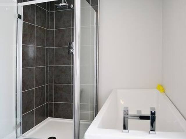 The bathroom with walk-in shower and bath.