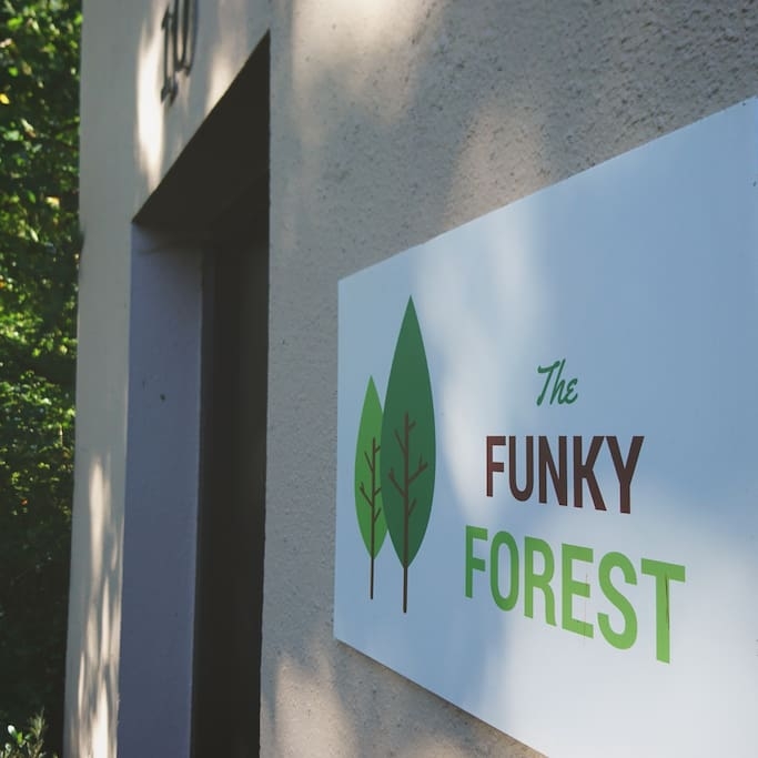 The Funky Forest