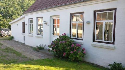 Ældre hyggeligt hus på landet med store lyse rum.