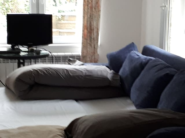 The cottage double sofa bed (bedroom 4)