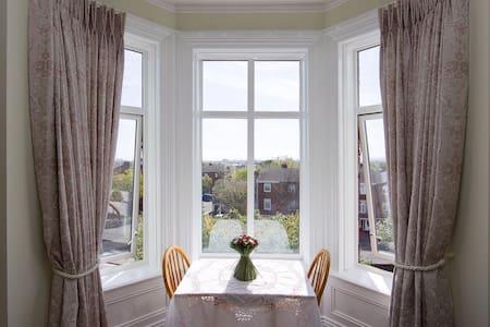 Stunning studio with bay window overlooking Dublin - Dublin 7 - Apartmen