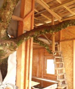 cabane dans un chêne - Privezac