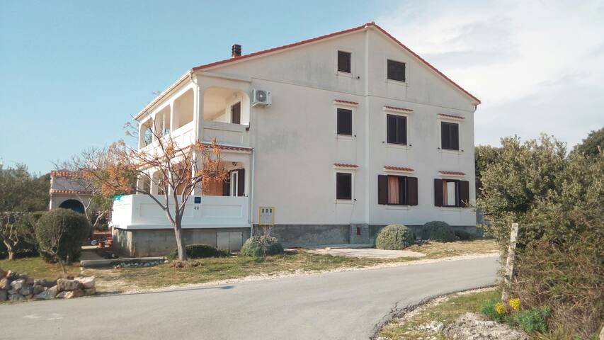 Apartment, Island of Pag, Mandre