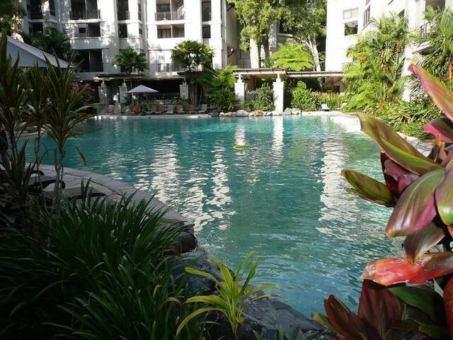 Sea Temple 2 Bed Apt Dual Key. Balcony Pool view - Palm Cove - Lägenhet