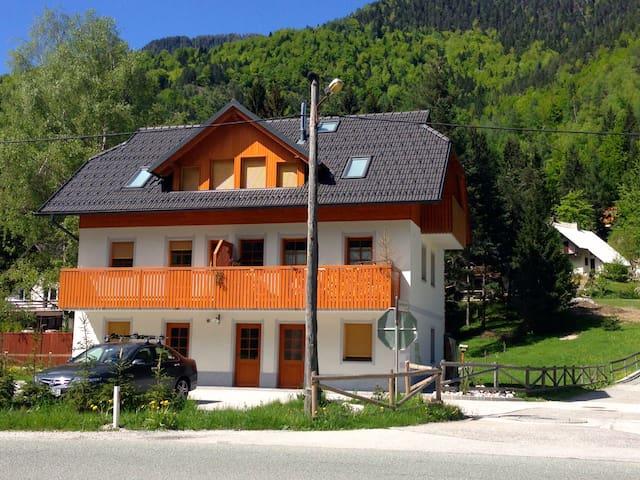 Vacation in Kranjska Gora-Martuljek - Gozd Martuljek - อพาร์ทเมนท์