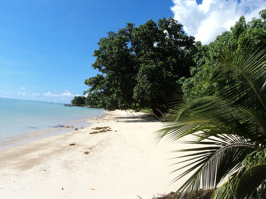 Long stretch of white sandy beach opposite the property.