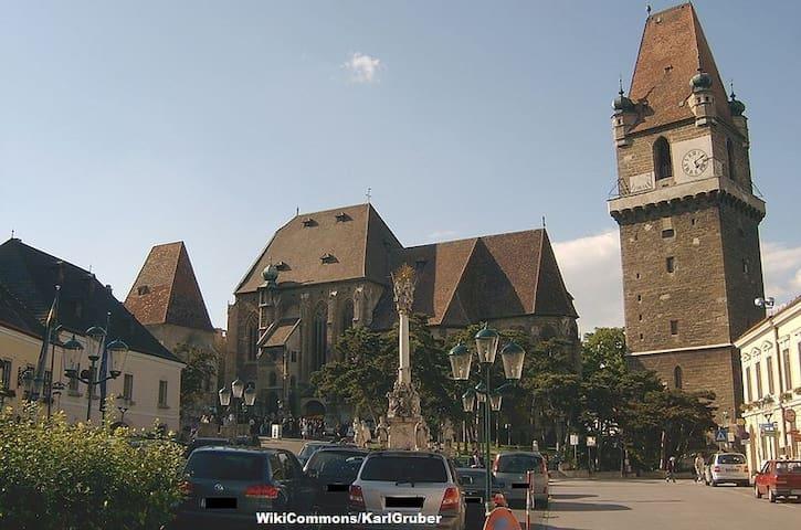 Topapartment Stadtrand Wien