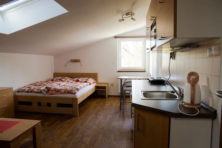 Penzion Starobor, apartmán 3