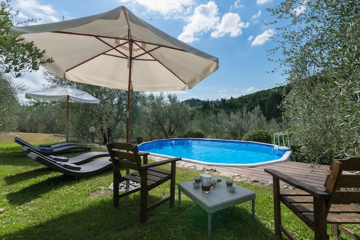 Carmignano*L'Olivo +swimming Pool
