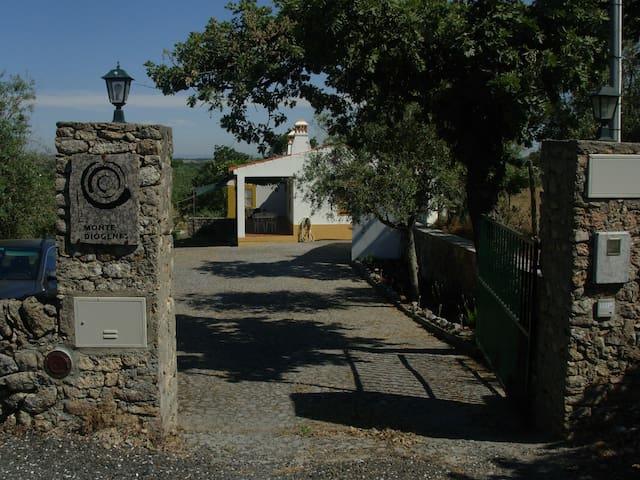 Monte Diógenes - Castelo de Vide