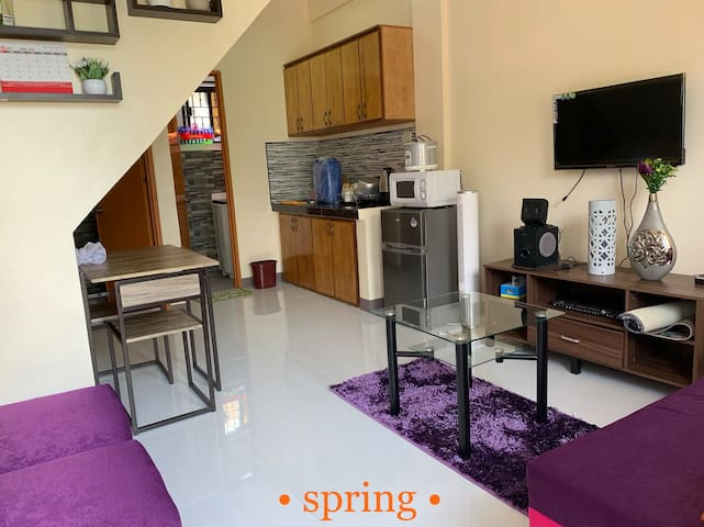 Four Seasons Apartment Lubao, 2BRs w/ WiFi- Unit 2
