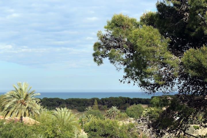 Apartamento vistas mediterráneo - la marina del pinet  elche alicante - Leilighet